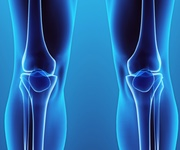 Knee condition knee injury arthroscopy knee replacement knee surgeon adelaide